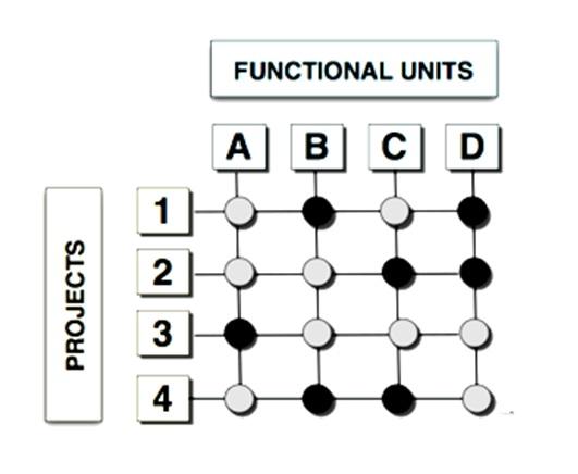 Matrixorganisatie
